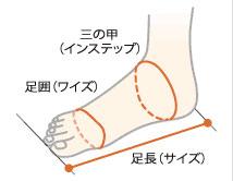 足の計測箇所