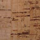 1609:コルク