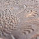 浮き彫り模様レザー
